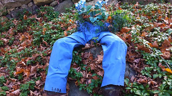 Flowers in his pants (c) in medias res by Melinda Kucsera