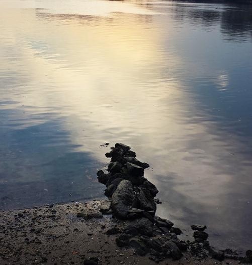 erosion (c) in medias res by Melinda Kucsera
