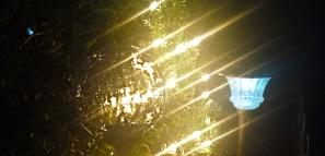 light20151224_170603