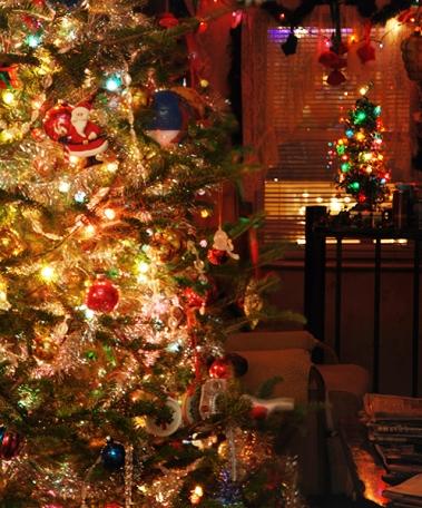 Christmas Tree (c) Melinda Kucsera